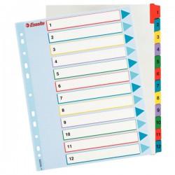 Rozřaďovač A4+ 1-12 papír. barevný Esselte 100209