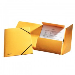 Prešpánové desky s gumičkou na spisy Esselte, řada Rainbow