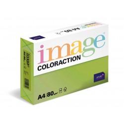 Papír barevný A4/80g Coloraction MA42 Java středně zelená, 500 ks