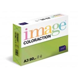 Barevný Xero Papír A3-80gr COLORACTION Java středně zelená - 500listů