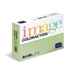 Barevný Xero Papír A4 - 160gr COLORACTION Forest pastelově zelená - 250listů