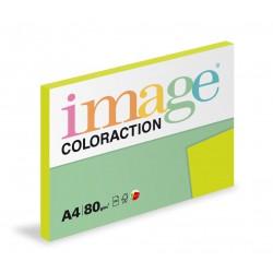 Barevný Xero Papír A4 - 80gr COLORACTION RIO reflexní zelená - 100listů v balení
