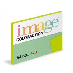 Barevný Xero Papír A4 - 80gr COLORACTION Java středně zelená - 100listů v balení