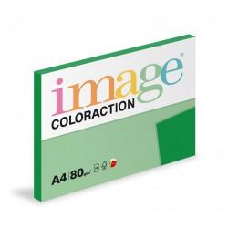 Barevný Xero Papír A4 - 80gr COLORACTION Dublin tmavě zelená - 100listů v balení