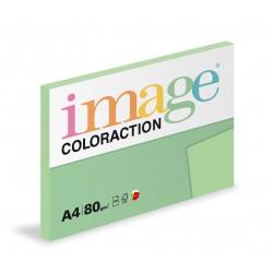 Barevný Xero Papír A4 - 80gr COLORACTION Forest pastelově zelená - 100listů v balení