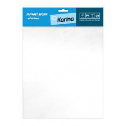 Papírový ručník trhací závěsný 250x320 mm, 50 listů