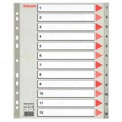 Plastové rejstříky A4 Esselte MAXI, 1 - 12 dělících listů